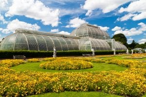 hotels near kew gardens